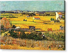 Harvest At La Crau With Montmajour In The Background Acrylic Print by Vincent Van Gogh