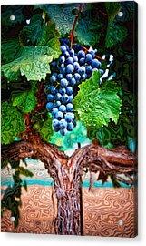 Harvest Details Acrylic Print by Kristine Ellison