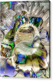 Acrylic Print featuring the digital art Harvest by Eleni Mac Synodinos