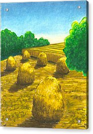 Harvest Gold Acrylic Print
