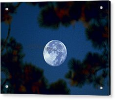 Acrylic Print featuring the photograph Harvest Moon Color 2013-10-20 by Jeremy McKay