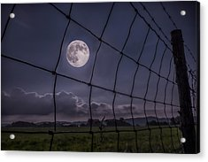 Acrylic Print featuring the photograph Harvest Moon by Jaki Miller