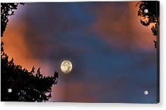 Acrylic Print featuring the photograph Harvest Moon by Julia Hassett