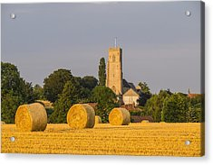 Harvest Scenes In The East Of England Acrylic Print by GKS Images