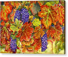 Harvest Time Acrylic Print by Karen Wright