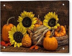 Harvest-time Acrylic Print