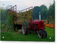 Harvest Time Tractor Acrylic Print by Bill Cannon