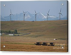 Acrylic Print featuring the photograph Harvesting Wind And Grain by Ann E Robson