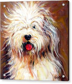 Harvey The Sheepdog Acrylic Print