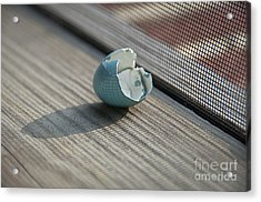 Hatched Acrylic Print by Terry Rowe