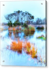 Hatteras Wetlands On The Outer Banks Acrylic Print by Dan Carmichael
