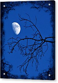 Haunted Acrylic Print