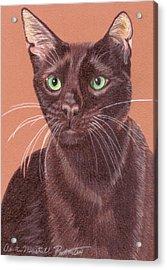 Havana Brown Vignette Acrylic Print