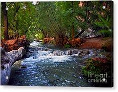 Havasu Creek Acrylic Print by Kathy McClure