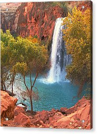Acrylic Print featuring the photograph Havasu Falls by Alan Socolik
