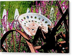 Have A Seat Acrylic Print by Heather Allen