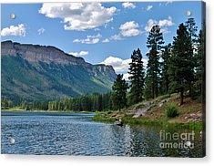 Acrylic Print featuring the photograph Haviland Lake by Janice Rae Pariza