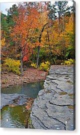 Haw Creek Fall 2 Acrylic Print by Marty Koch
