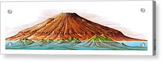 Hawaii And Olympus Mons Acrylic Print by Gary Hincks