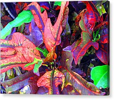 Hawaiian Foliage Acrylic Print by Jean Hall