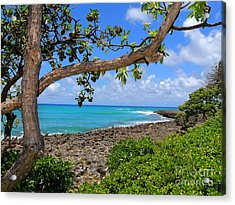 Acrylic Print featuring the photograph Hawaiian Paradise by Kristine Merc