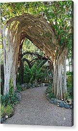 Hawaiian Pathway Acrylic Print