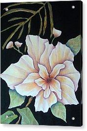 Hawaiian Pua Acrylic Print by Pamela Allegretto