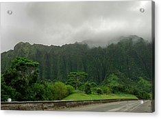 Hawaiian Rain Forest Acrylic Print