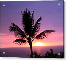 Acrylic Print featuring the photograph Hawaiian Sunset And Palm by Karen Nicholson