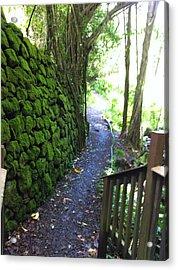 Hawaiian Walkway Acrylic Print