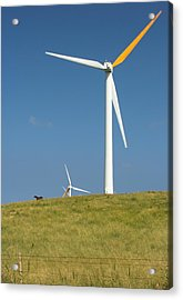 Acrylic Print featuring the photograph Hawi Wind Farm  by Scott Rackers