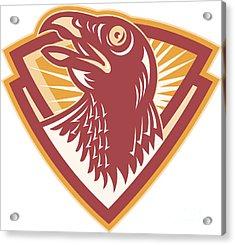 Hawk Head Shield Retro Acrylic Print by Aloysius Patrimonio