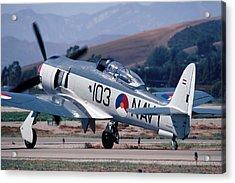 Hawker Sea Fury Nx51sf Taxiing Camarillo August 23 2003 Acrylic Print by Brian Lockett