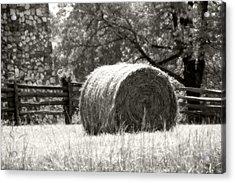 Hay Bale In A Farm Field Acrylic Print by Heather Allen