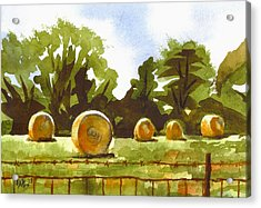 Hay Bales At Noontime  Acrylic Print by Kip DeVore