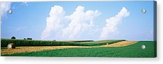 Hay Bales In A Field, Jo Daviess Acrylic Print by Panoramic Images