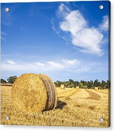 Hay Bales Under Deep Blue Summer Sky Acrylic Print by Colin and Linda McKie