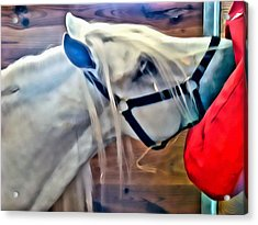 Hay For The White Horse Acrylic Print by Alice Gipson