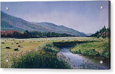 Hayfield And River Acrylic Print