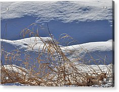 Hayfield In Winter Acrylic Print