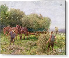 Haymaking Acrylic Print by Arthur Hopkins