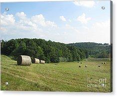 Haymaking Season Acrylic Print