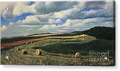 Hayrolls On Swirl Field In Latrobe By Christopher Shellhammer Acrylic Print