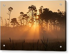 Hazy Summer Morning Sunrise Acrylic Print