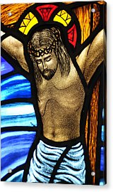 He Hung In There Acrylic Print by Karen Showell