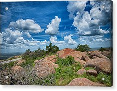 Acrylic Print featuring the photograph Head In The Clouds by Yvonne Emerson AKA RavenSoul