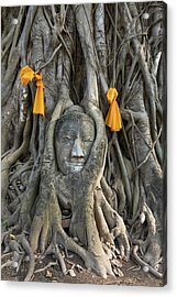 Head Of The Sand Stone Buddha Image Acrylic Print by Tosporn Preede