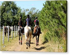 Heading To The Cross Country Course Acrylic Print