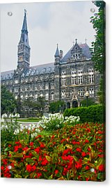 Healy Hall Acrylic Print by Mitch Cat