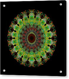 Heart Aura - Mandala Art By Sharon Cummings Acrylic Print by Sharon Cummings